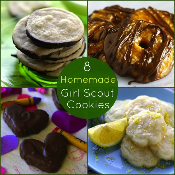 Homemade Girl Scout Cookie Recipes | Samoa, Girl scouts and Cookie ...