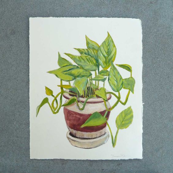 Potted Plant Painting - Philodendron - Original Botanical Art on Ivory Cream Paper. $35.00, via Etsy.