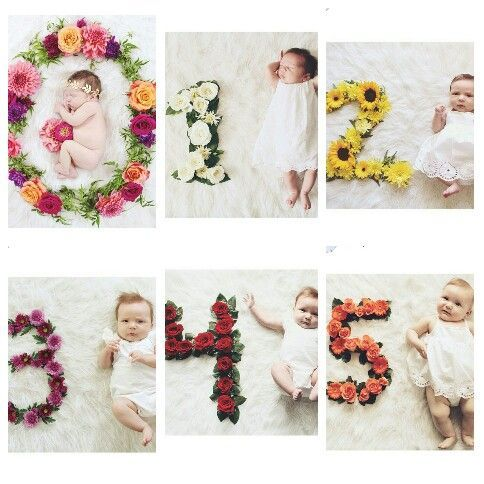 Idea For Month By Month Baby Pictures Monthly Baby Pictures Baby Monthly Pictures Girl Baby Month By Month