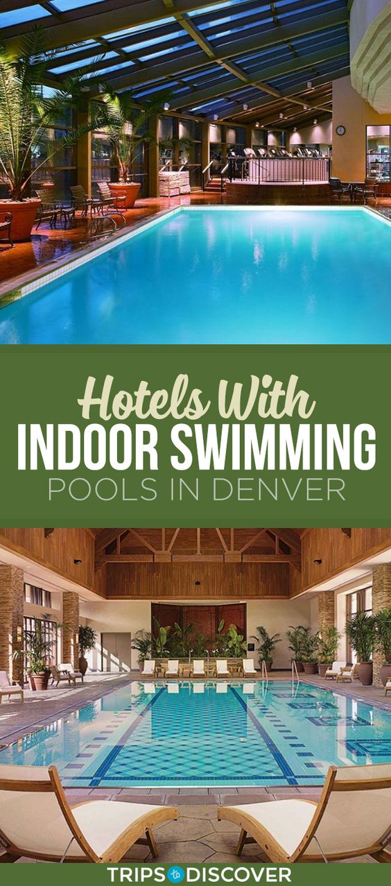 7 Denver Hotels With Indoor Pools You Can Enjoy All Year Long Best Hotels In Denver Denver Hotels Indoor Swimming Pools