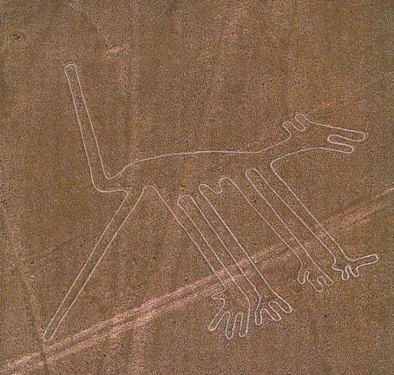 las pistas de Nazca. F6f2a6a1ae4b32bbca630cceba60c89a