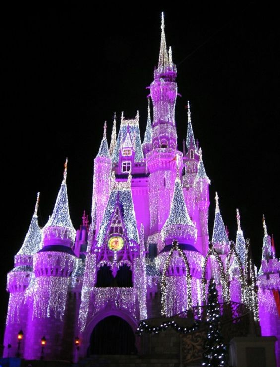 If you only have one day, do Magic Kingdom. If you have two, do Magic Kingdom plus either Epcot or Animal Kingdom. Hollywood Studios has the least to offer, so save that for longer trips.