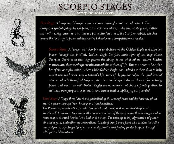 The Three Stages of the #Scorpio Evolution: the Scorpion, the Eagle, and the Phoenix.