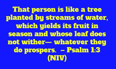 That person is like a tree planted by streams of...