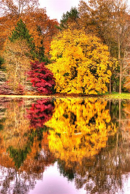 Fall reflections, Branford, Long Island Sound in New Haven County, Connecticut, United States