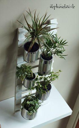 Plantes dans des boîtes de conserves suspendues sur une échelle