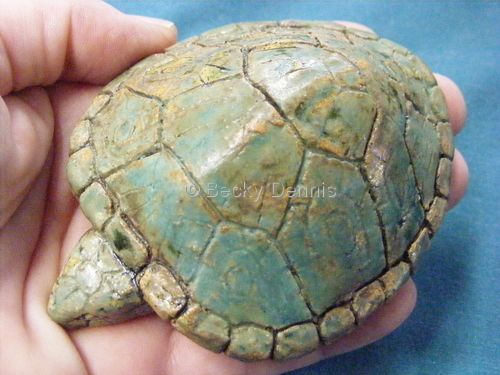Green turtle rattle, Becky Dennis
