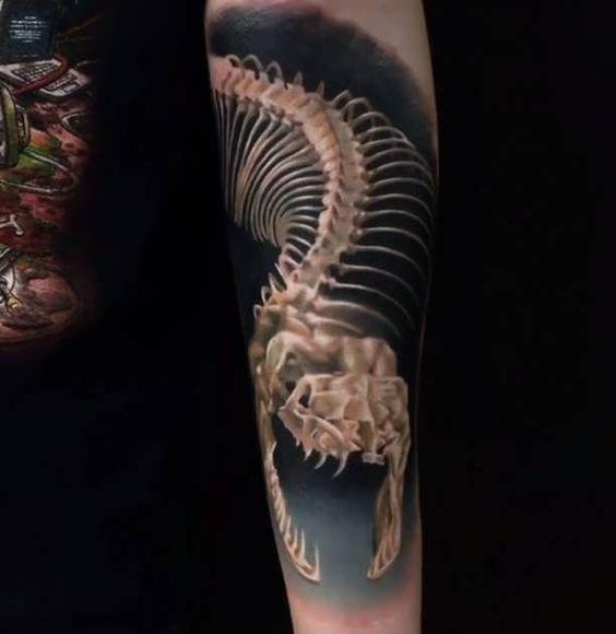 skelette schlangen and tattoos on pinterest. Black Bedroom Furniture Sets. Home Design Ideas