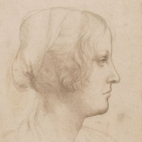 Leonardo Da Vinci Una vida en dibujos - comprar libro de lujo