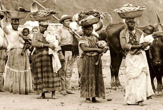 Foto de Marc Ferrez - Partida para colheita de café no Vale da Paraíba - Rio de Janeiro - ano de 1885.