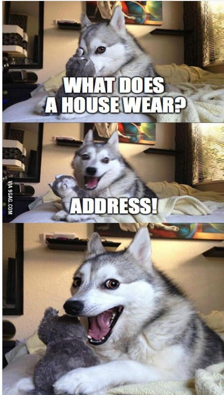 Funny Husky Jokes Meme : Pun husky lols and rofls pinterest puns