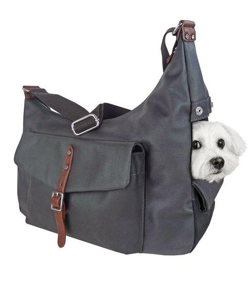 Bolsa Para Transportar Caes Pequenos : Bolso para perro bolsa cachorros