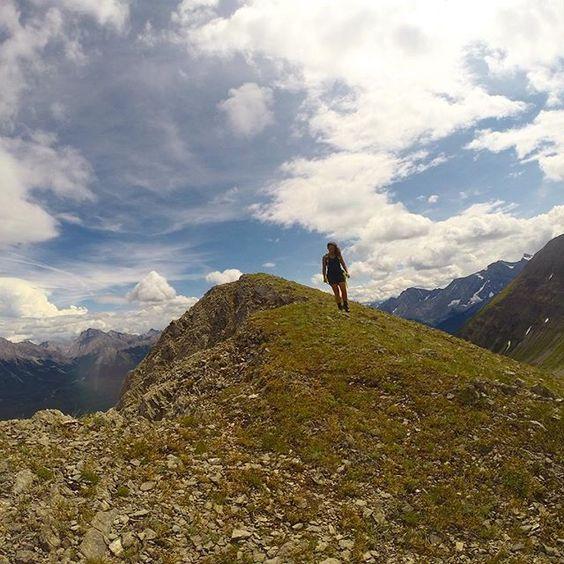 Mountain Betch