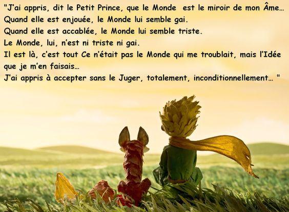 Le petit prince de St Exupéry F7234448613f11503be53bad6659b985