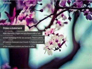 ♦♦ WOO THEMES ♦♦ 36 responsive themes as at Feb 2014.