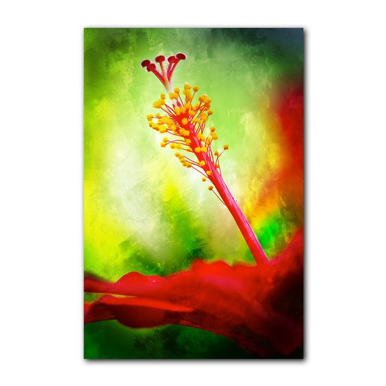 'Tropical Hibiscus' by Alexis Bueno Graphic Art on Wrapped Canvas