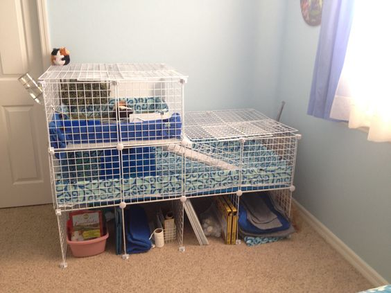 2 story c c guinea pig cage guinea pig cages pinterest for Guinea pig cages for two