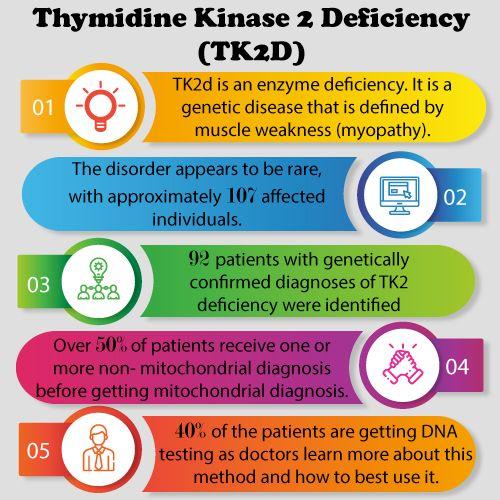 Thymidine Kinase 2 Deficiency Market Insight Market Size