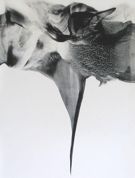 Patti Jordan | Needler - Corpus 009 [2010, ink & graphite on paper] | http://www.pattijordan.com/