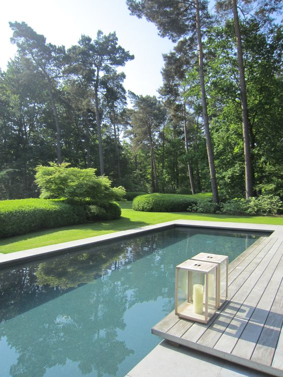 Handsome Residential Gardens And Naturalistic Lap Pool By