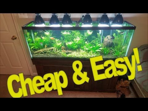 Diy Lighting For Your Planted Tank
