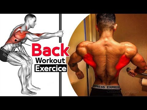 How To Build Your Back Workout 6 Effective Exercises تمارين الظهر Youtube Back Workout Workout Exercise