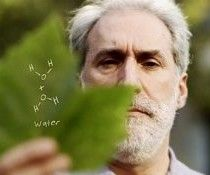 Chemist Hopes Artificial Leaf Can Power Civilization Using Photosynthesis - http://blog.hepcatsmarketing.com - check out our blog network for more news like this!