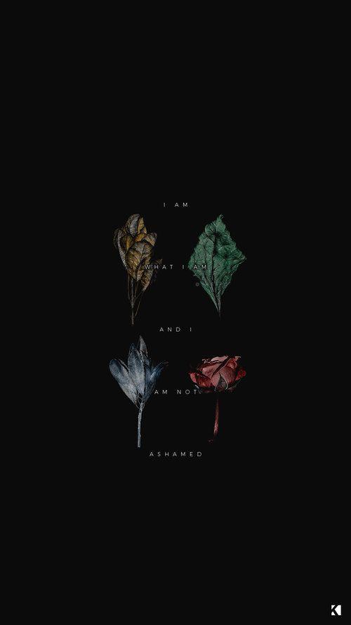 Wallpapers No 419 Hogwarts Houses Dark Dead Botanicals Kaespo Design Hogwarts Houses Hogwarts Aesthetic Slytherin Wallpaper