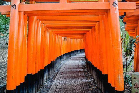 Japon Kyoto Hundreds of orange torii gates in Kyoto Japan - Wander Fushimi Inari-Taisha