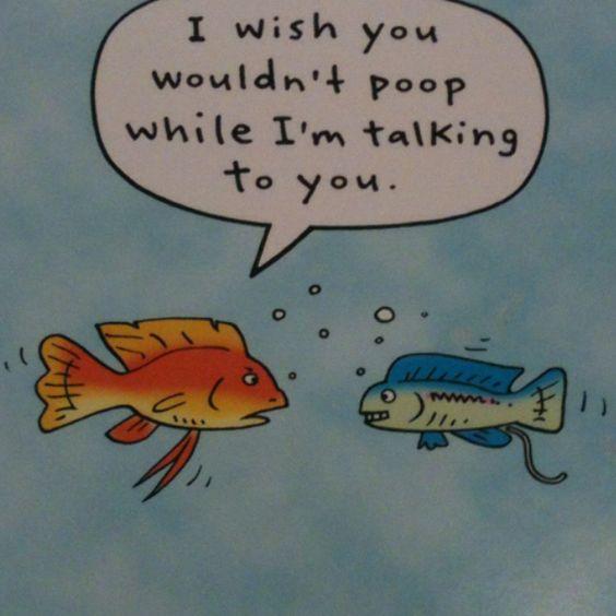 Hahahahhh!
