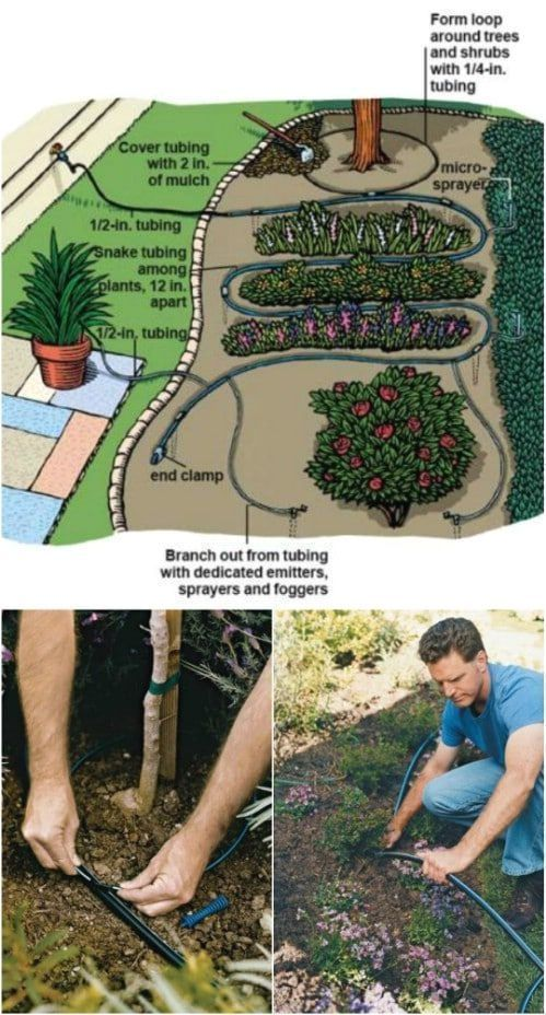Landschaftsdesign Mit Knockout Rosen Knockoutrosen Landschaftsdesign Mit Knocko Knock In 2020 Garden Irrigation System Garden Watering System Irrigation System Diy