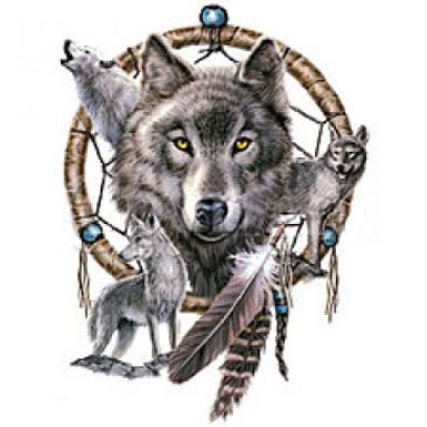 wolf dreamcatcher drawing related - photo #33
