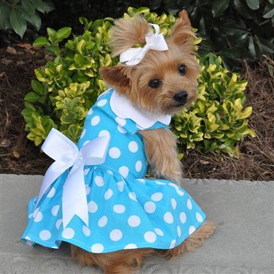 The New Blue Polka Dot Dress is right in step in the new colors of Spring. Great for everyday wear, light weight and fun design. Comes complete with matching leash and D-Ring.