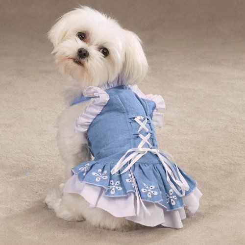 Zack And Zoey Chambray Corset Dress Size Xxsmall Check Out This Great Product Affiliate Link Dogapparela Yorkie Clothes Dog Clothes Patterns Dog Dresses