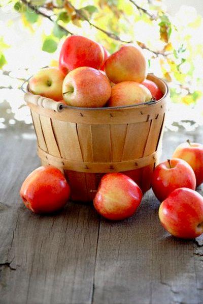 Поспели яблоки в саду, Народ собрался в храме… К нему сегодня я приду С созревшими плодами И их раздам, как каждый год, Не пропустив ни разу… Пусть счастье нынче к вам придет! И с Яблочным вас Спасом!