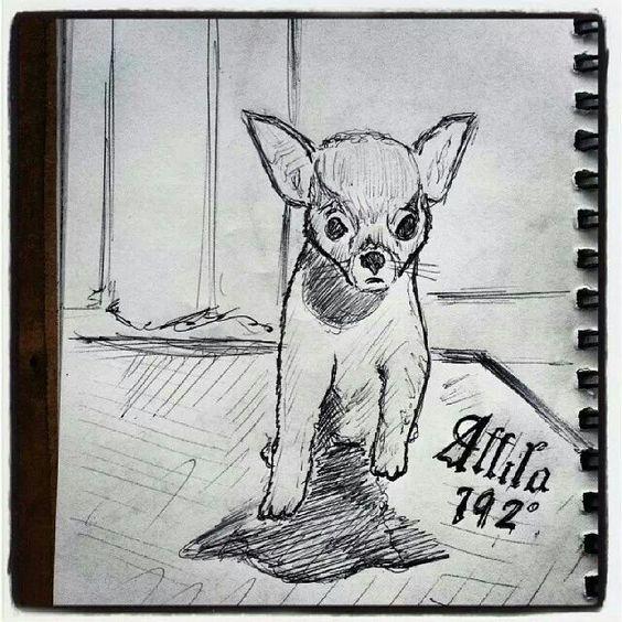 Ritratto di cane