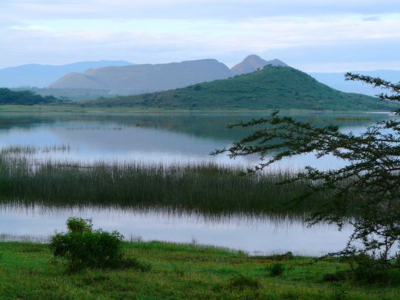 Lake Elementaita South of the lake, Kenya  --  new Natural World Heritage Site: