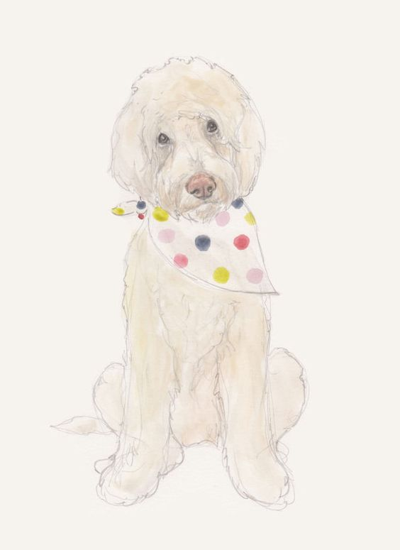 Doodle by annatyrrell on Etsy