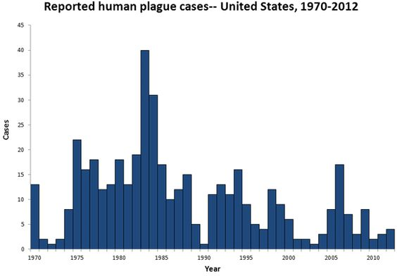 Reported cases of plague. Rather more than I'd thought in the last century...so maybe Miss H isn't quite as barking as I'd thought...