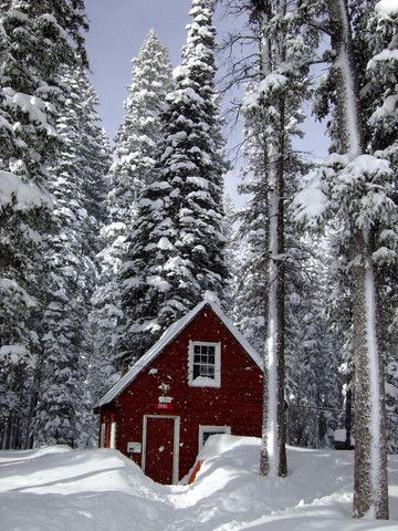 Cabin in the woods on the grand mesa co winter for Colorado cabin winter
