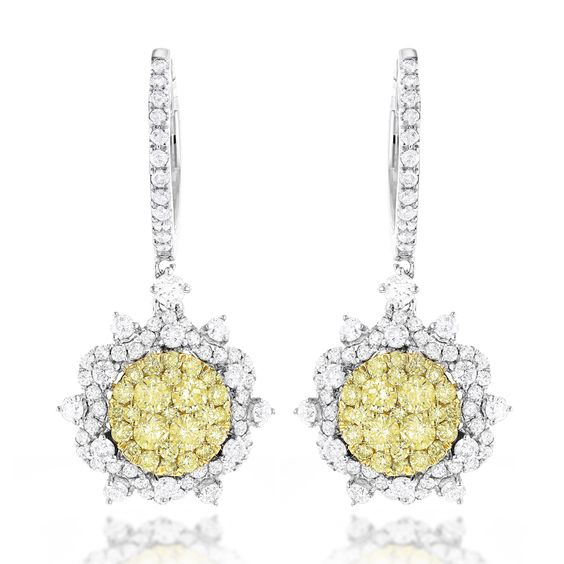 Luxurman 14k Gold 2 3/4ct TDW and Yellow Diamond Flower Drop Earrings