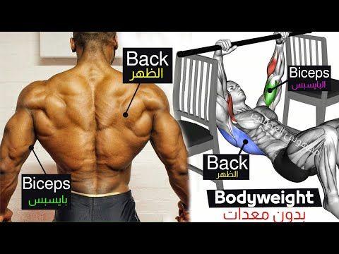 8 Ejercicio Completo Entrenamiento De Peso Corporal Para Espalda Biceps Sin Equipo Youtu Bodyweight Back Workout Back And Biceps Body Weight Workout Plan