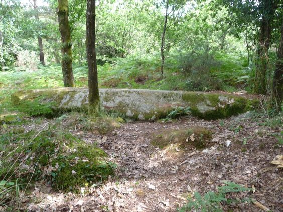 Grande pierre plate proche du dolmen de la Loge aux Loups - Trédion. Morbihan. Brittany