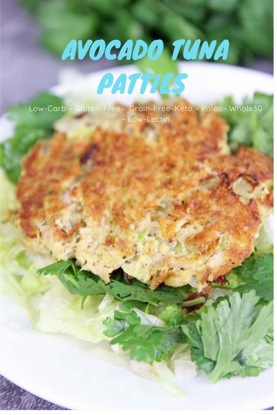 Tuna Avocado Patties Low-Carb Grain Free Recipe - The Home and Travel Cafe