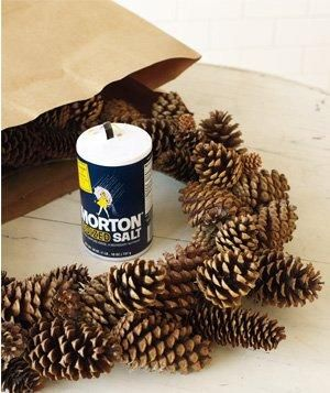 Salt used to decorate wreath Place a wreath of pinecones or faux evergreen in a paper bag with a 1/4 cup of salt. Fold the top of the bag over and gently shake.