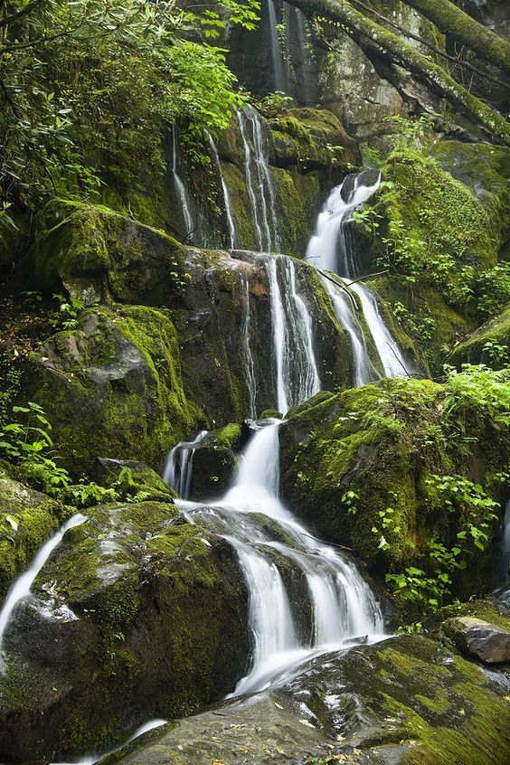 Place of a Thousand Drips - Smokey Mountain Waterfall