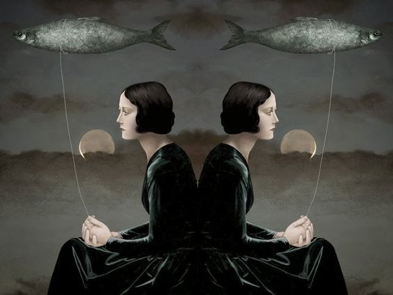 Улитка - Daria Petrilli