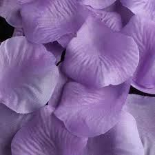 Resultado de imagem para lilás
