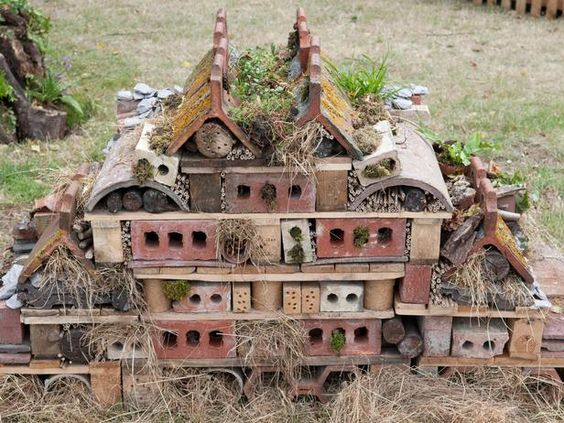 Wildlife wall gardens insects and bug hotel for Uses for old bricks