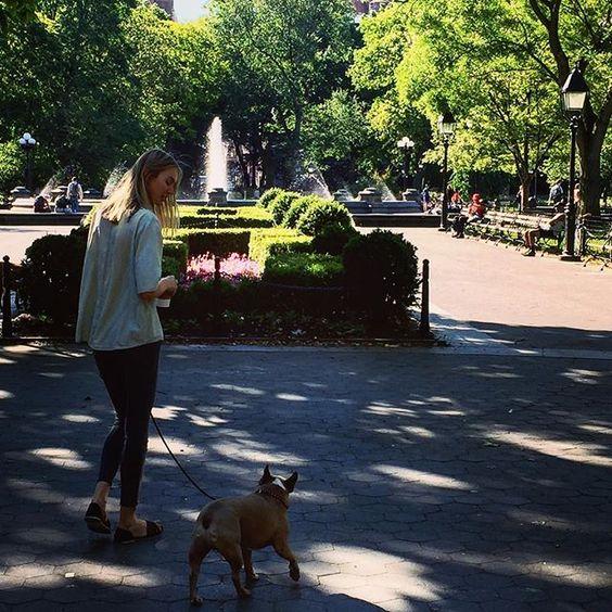 http://washingtonsquareparkerz.com/beautifulmorning-washingtonsquarepark-nyc-2/ | #beautifulmorning #washingtonsquarepark #nyc